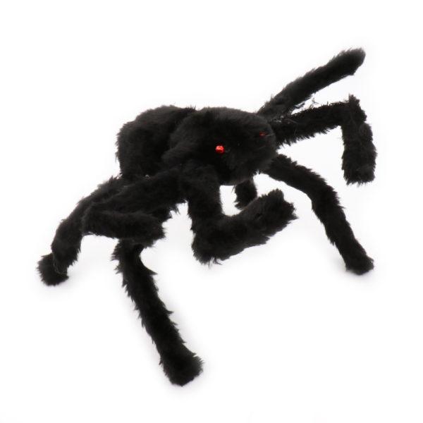 Plain black furry spider