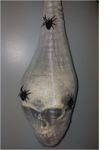 Cocoon with skull