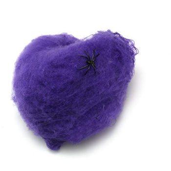 Spider web purple