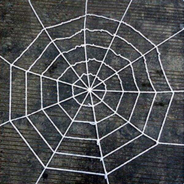 Giant string spider web