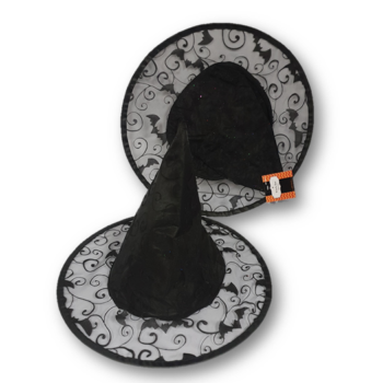 Child witch hat with bat design
