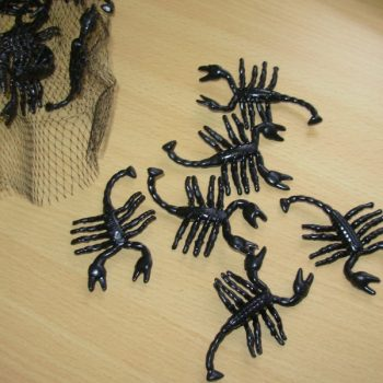Bage of black scorpions