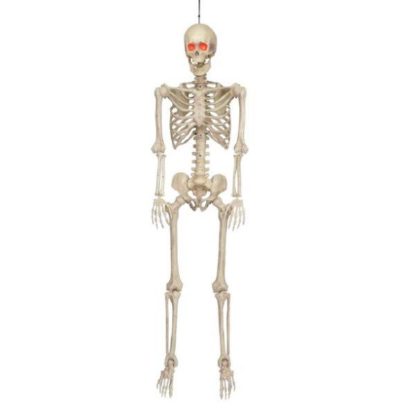 Poseable life size skeleton