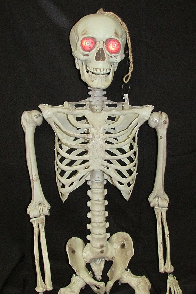 Skeleton with light up eyes