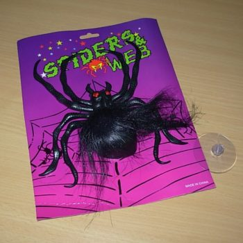 Large hairy spider with suction cup