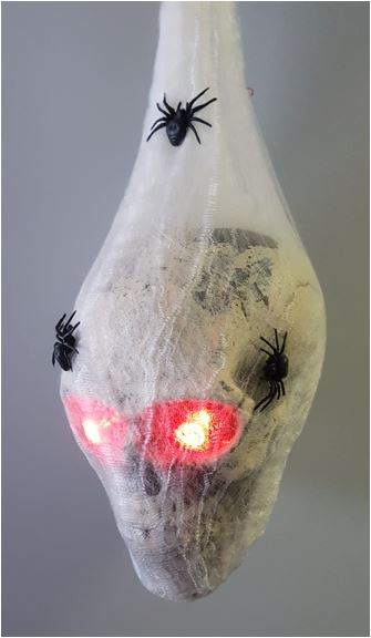 Cocoon with skull light up