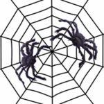 Black string spider web