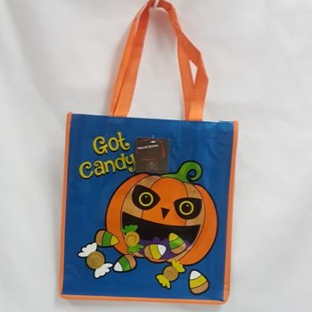 Trick or treat bag - got candy
