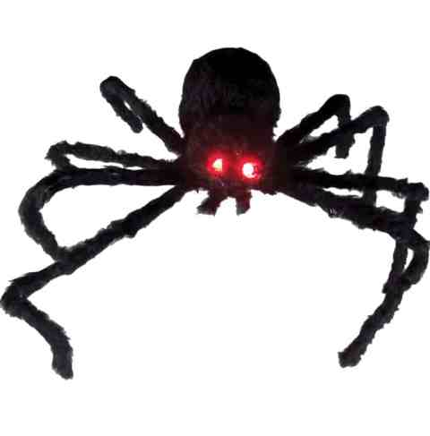 Spider with light up eyes