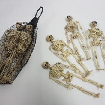 Bag of small skeletons