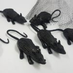 Small black mice