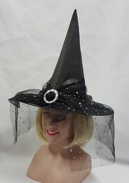 Black witch hat with veil