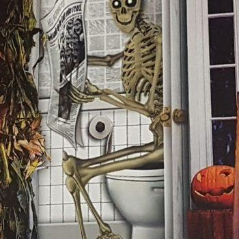Skeleton toilet door cover