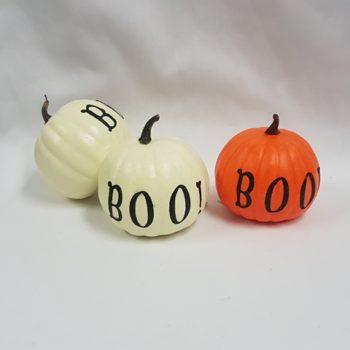 Pumpkin with wording BOO