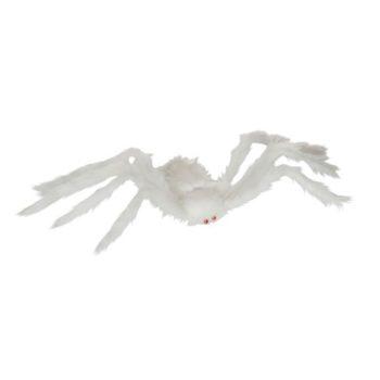 White hairy spider