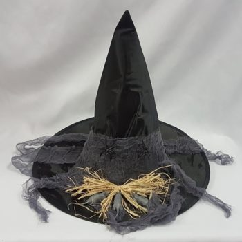 Witch hat with mice