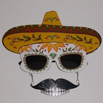 Day of the dead sun glasses