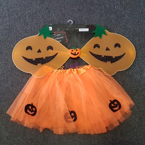 Pumpkin wing & tutu set