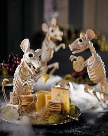 Rat skeleton prop