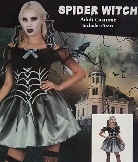 Spider witch ladies costume