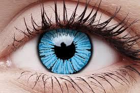 Blizzard contact lenses