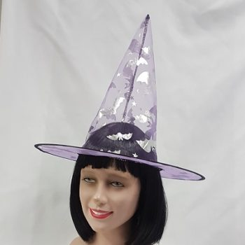 Witch hat with silver bats