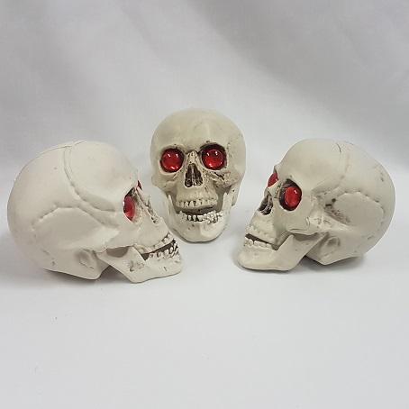 Pack of three skulls