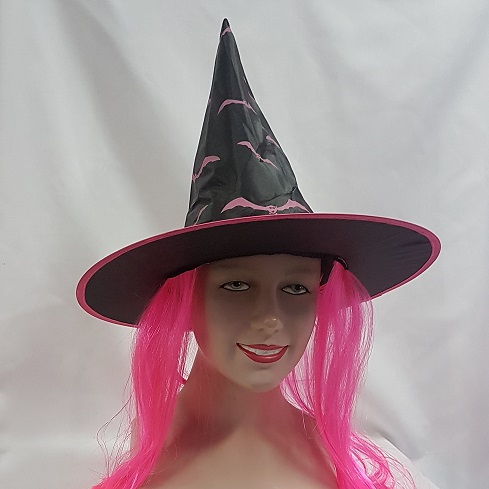 Witch hat with pink hair