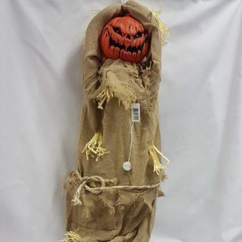 Animated pumpkin scarecrow