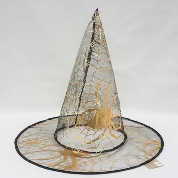 Witch hat with gold web design