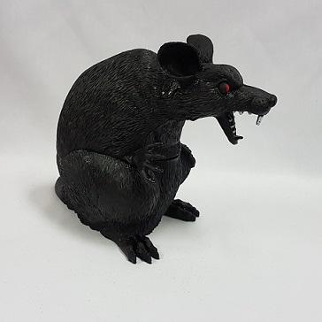 Large black rat