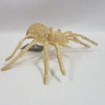 Skeleton spider light up