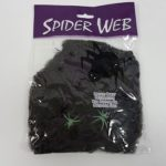 Black stretchable spider web
